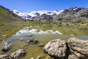 Lombardy, Italy, Forni valley, San Matteo peak and Forni glacier reflect at Rosole lake