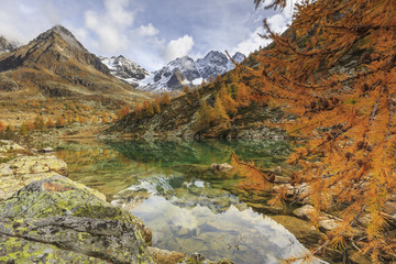 Italy, Lombardy, autumn landscape at Painale lake, in the background Ron peak
