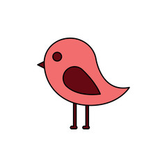 cute bird animal wild nature vector illustration