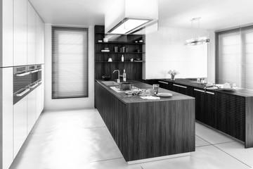 Contemporary Kitchen (B&W)