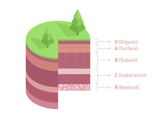 Soil layers diagram. Isometric soil horizons and profile. Earth structure vector illustration