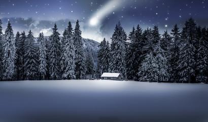 Wall Mural - Winternacht