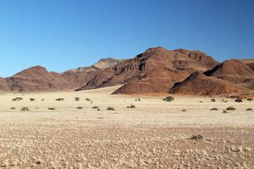 Kontrastreiche Landschaft mit ockerfarbenen Bergen im Hintergrund uns Ebene mit gelbem Savannengras im Vordergrund