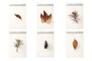 set of paper note with leaf isolated on the white background.