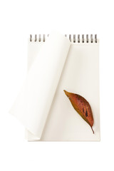white ring binding note with leaf, pencil isolated on the white background.