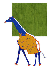 Tanzanian Giraffe - drawing of animal with map