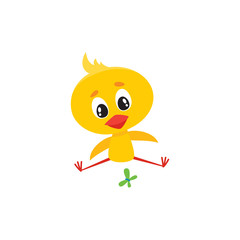 Cute baby chicken character sitting and looking at butterfly, Easter icon, cartoon vector illustration on white background. Baby chicken character playing with butterfly, Easter symbol