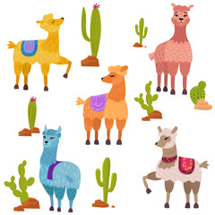 Vector Set of cute cartoon lamas characters with cactus.
