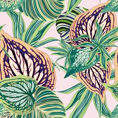 Wektorowa Bezszwowa Botaniczna tło Tropikalna dżungla