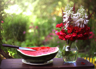 outdoor still life with cut water melon, knife flowers in vase on sunny green garden background