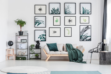 Green living room with sofa