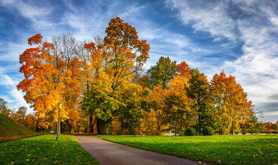 Colorful autumn park in sunny bright day. Beautiful autumn landscape with yellow and red trees. Scenery colored nature.