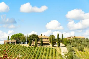 Ferienwohnungen auf der  Tenuta di Monaciano
