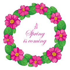 Vector round wreath with outline pink Primula or Primrose flower and green leaves on white background. Composition with blooming Primula in contour style for spring design.