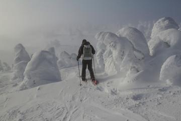 Snowshoeing on Big White Mountain, British Columbia, Canada