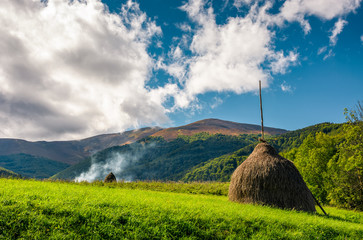 Stack of hay on a green meadow in the mountains under a cloudy summer sky