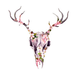 Deer animal skull in flowers. Watercolor