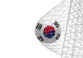South Korea flag soccer ball scores a goal in a net