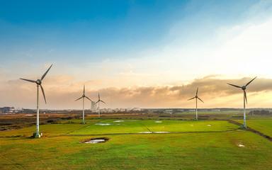 Windkraft oder Windenergieanlagen auf einem Feld