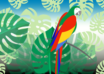 parrot whit floral summer pattern background, vector for wallpapers, web page backgrounds, surface textures, textile.