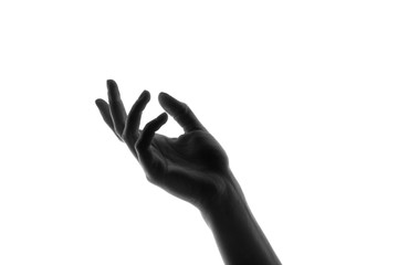 hand silhouetted against a white background