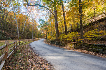 Cuttalossa Farm, New Hope, Bucks County, Pennsylvania, USA, America