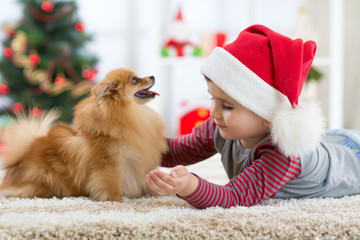 Happy little kid boy and dog at Christmas