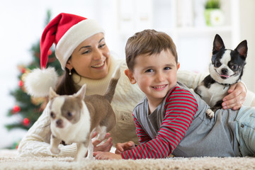 Happy little kid boy, mother and dogs at Christmas