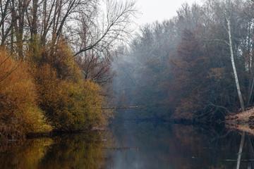 Río Órbigo y vegetación de ribera durante el invierno.