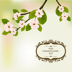 Flowers blossom in the spring. Spring flowers separately on a branch with green leaves. Frame for congratulations with your text.