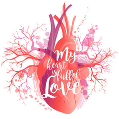 Vector lettering realistic Human heart