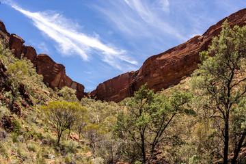 Kings Canyon, Northern Territory,Watarrka National Park,  Australia