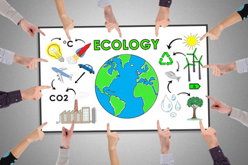 Ecology concept on a whiteboard