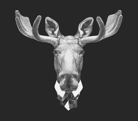 Portrait of Moose in suit, hand-drawn illustration