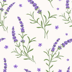 Vector lavender seamless pattern. Beautiful and elegant lavender flowers background