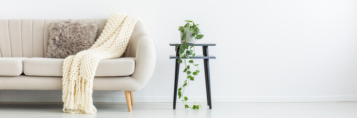 Living room with plant