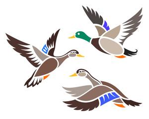 Stylized Birds - Ducks