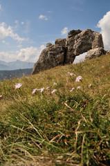 Ballade à la Pierre Percée - Isère - Rhône-Alpes