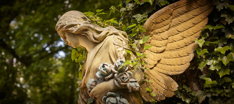 A fragment of ancient sculpture angel in a golden glow in the old cemetery.