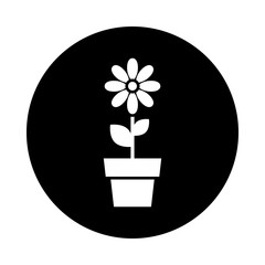 Flower in pot circle icon. Black, round, minimalist icon isolated on white background. Flower simple silhouette. Web site page and mobile app design vector element.