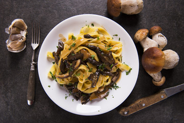 Tagiatelle pasta with creamy sauce with porcini mushrooms