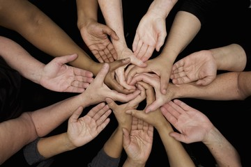 diversity many diverse women's hands symbolize unity and empowerment women