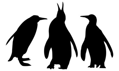 silhouette of three penguins