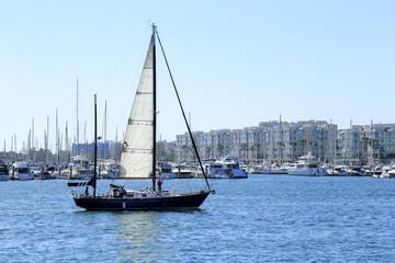 Sailing at Marina Del Rey, California