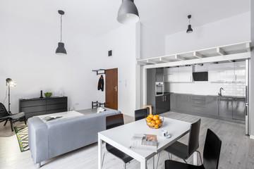 Open space loft apartment