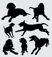 vizsla dog animal silhouette good use for symbol, logo, web icon, mascot, sticker, sign, or any design you want.