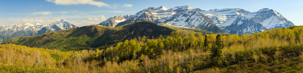 Autumn scene with Mount Timpanogos, Utah, USA.