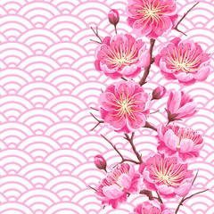 Seamless pattern with sakura or cherry blossom. Floral japanese ornament of blooming flowers