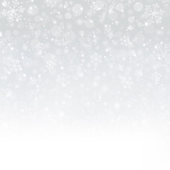 Snowflakes of Winter Christmas in white background, illustration vector