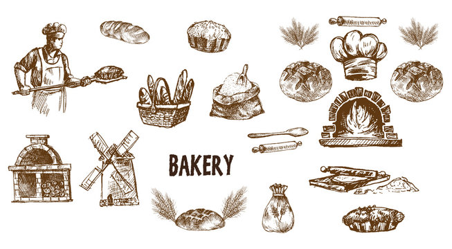 Digital vector detailed line art bakery